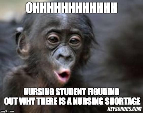 nursing school memes 18.1
